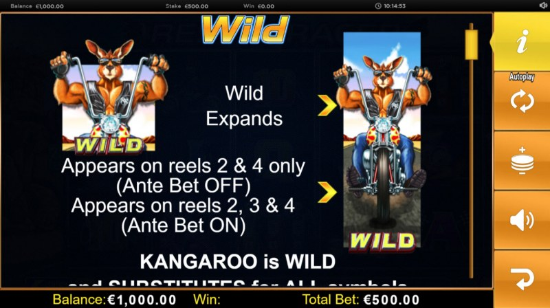 Respin Racer :: Wild Symbols Rules
