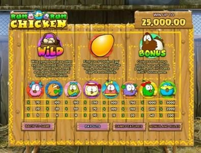 slot game symbols paytable with wild and bonus rules