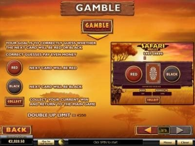Gamble Feature Games Rules and How to Play.