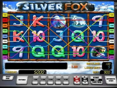 Main game board featuring five reels and 9 paylines with a $900,000 max payout