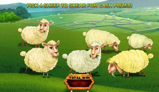 Pick 4 sheep to shear for cash.