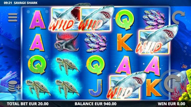 Savage Shark :: Multiple winning combinations
