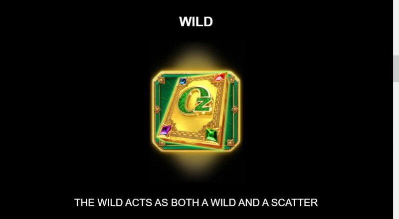 Sisters of Oz Jackpots :: Wild Symbol Rules
