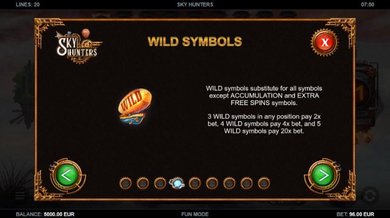 Sky Hunters :: Wild Symbols Rules