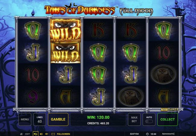 Tales of Darkness Full Moon :: Multiple winning paylines