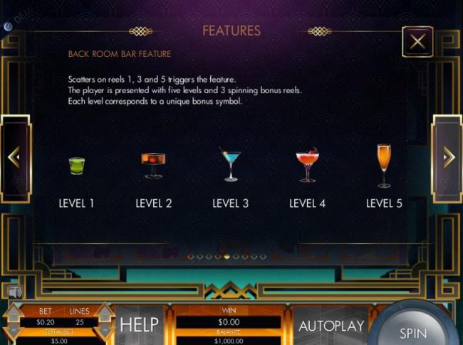 Back Room Bar Feature - Scatters on reels 1, 3 and 5 triggers the feature. The player is presented with five levels and 3 spinning bonus reels. Each level corresponds to a unique bonus symbol.