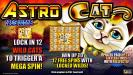 features include: 1296 ways to win. Lock in 12 wild cats to trigger a mega spin! Win up to 12 free spins with locked wilds! Prizes paid up to 16 times with Reelfecta!