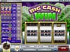 Vegas2Web featuring the Video Slots Big Cash Win with a maximum payout of $100,000