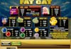 Miami Club featuring the Video Slots Fat Cat with a maximum payout of 25,000x