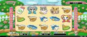 Bovegas featuring the Video Slots Purrfect Pets with a maximum payout of $12,500