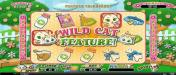 Cafe featuring the Video Slots Purrfect Pets with a maximum payout of $12,500