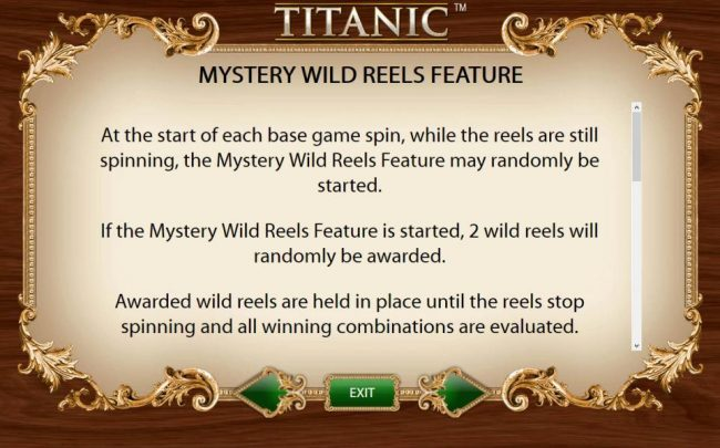 Mystery Wild reels Feature - At the start of each base game spin, whille the reels are still spinning, the Mystery Wild Reels Feature may be randomly started.