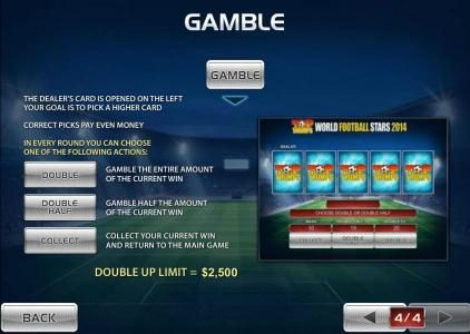Gamble feature is available after each winning spin.