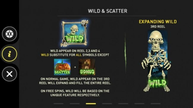 Wild and Scatter Symbols Rules and Pays