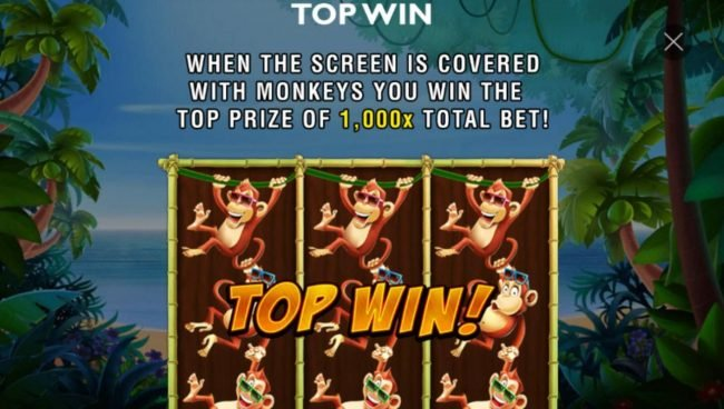 When the screen is covered with monkeys you win the top prize of 1,000x total bet!