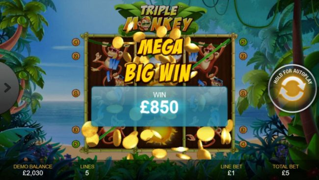 Triple Monkey :: An 850.00 Mega Win!