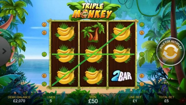 Triple Monkey :: Winning paylines