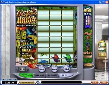 Euro Grand featuring the Video Slots Tropic Reels with a maximum payout of $62,500