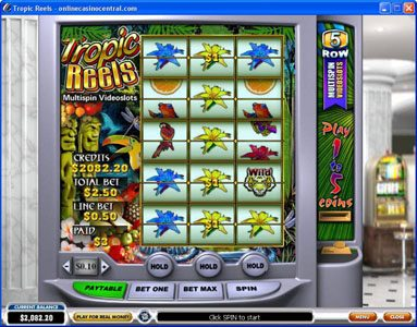 Winner Online featuring the Video Slots Tropic Reels with a maximum payout of $62,500