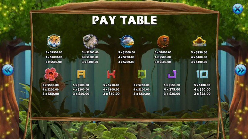 The primeval Rainforest :: Paytable