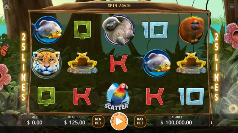 The primeval Rainforest :: Main Game Board
