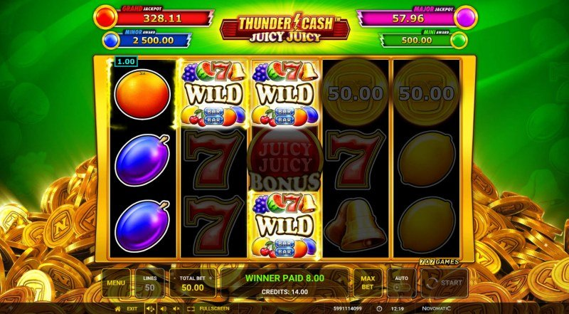 Thunder Cash Juicy Juicy :: Multiple winning paylines