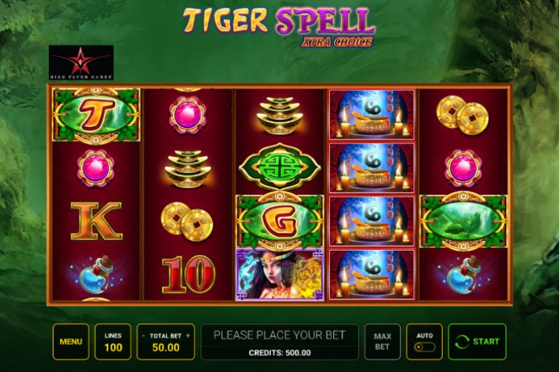 Tiger Spell Xtra Choice :: Main Game Board