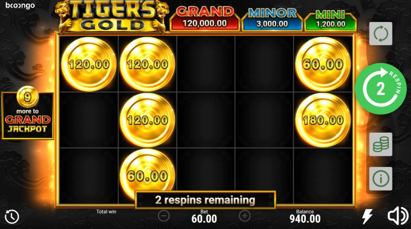 Tiger's Gold Hold and Win :: Bonus game board