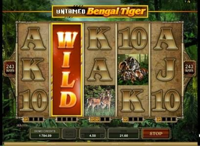 Casinsi featuring the Video Slots Untamed Bengal Tiger with a maximum payout of $90,000
