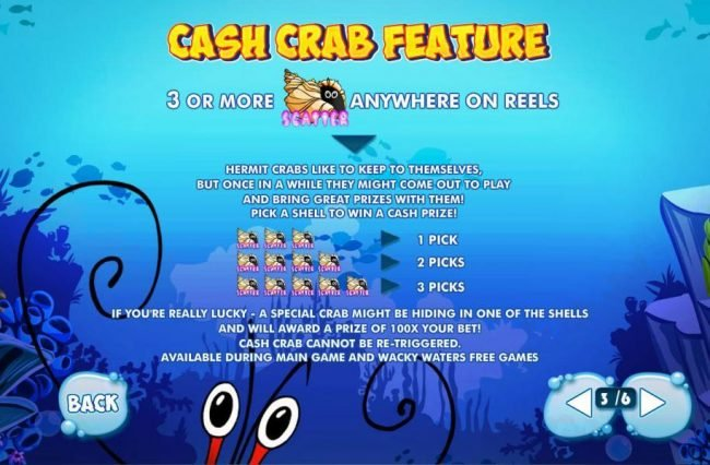 CrabCash Feature - 3 or more hermit crabs anywhere triggers Cash Grab Feature.