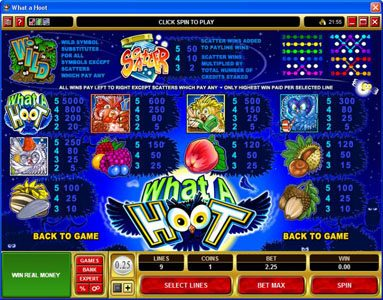 Win Paradise featuring the Video Slots What a Hoot with a maximum payout of $25,000