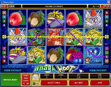 Slot Planet featuring the Video Slots What a Hoot with a maximum payout of $25,000
