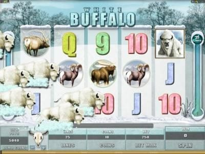 Lucky Dino featuring the Video Slots White Buffalo with a maximum payout of $6,000