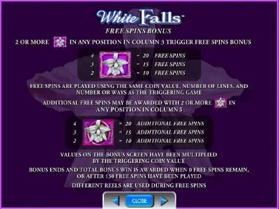 free spins bonus rules and paytable