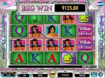 here we have a 9125 coin big win jackpot