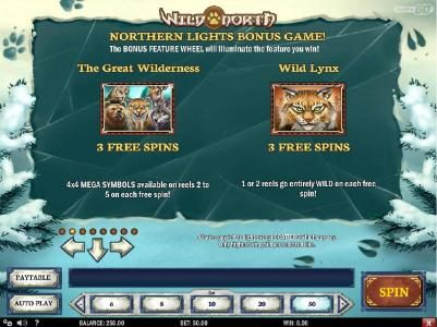 Northern Lights Bonus game Rules - The Great Wilderness and Wild Lynx