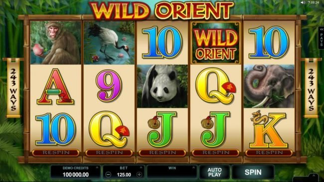 My Win 24 featuring the Video Slots Wild Orient with a maximum payout of $60,000