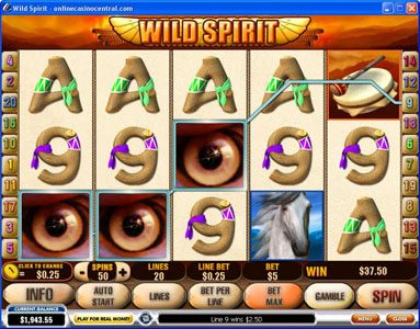 50 Stars featuring the Video Slots Wild Spirit with a maximum payout of $250,000
