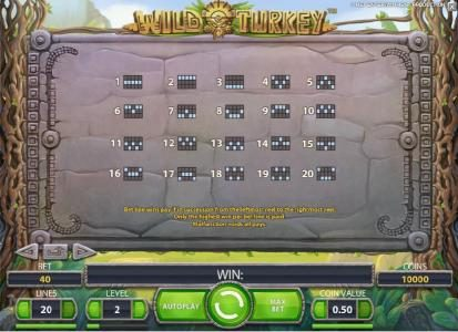 Play slots at Guru Play: Guru Play featuring the Video Slots Wild Turkey with a maximum payout of $20,000