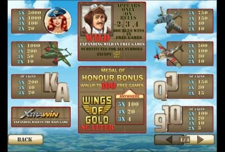 3 or more wings of gold symbols anywhere triggers medal of honour bonus feature