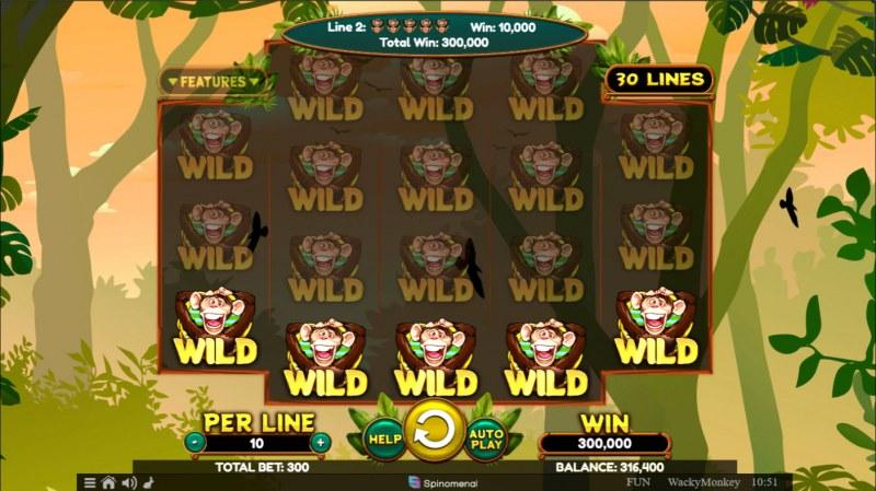 Wacky Monkey :: Full Screen Win