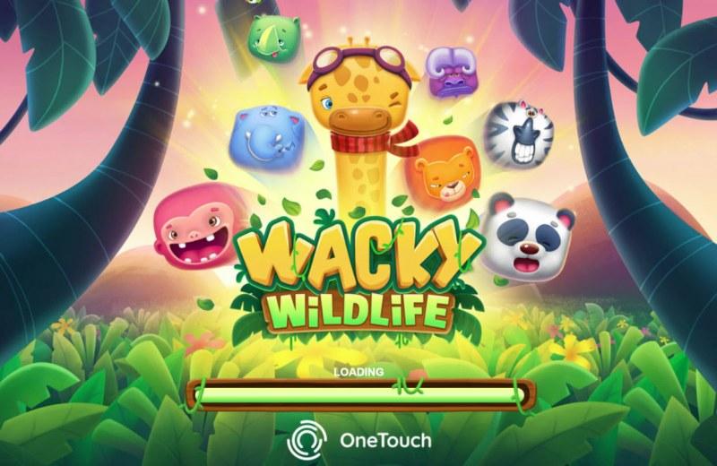 Wacky Wildlife :: Introduction