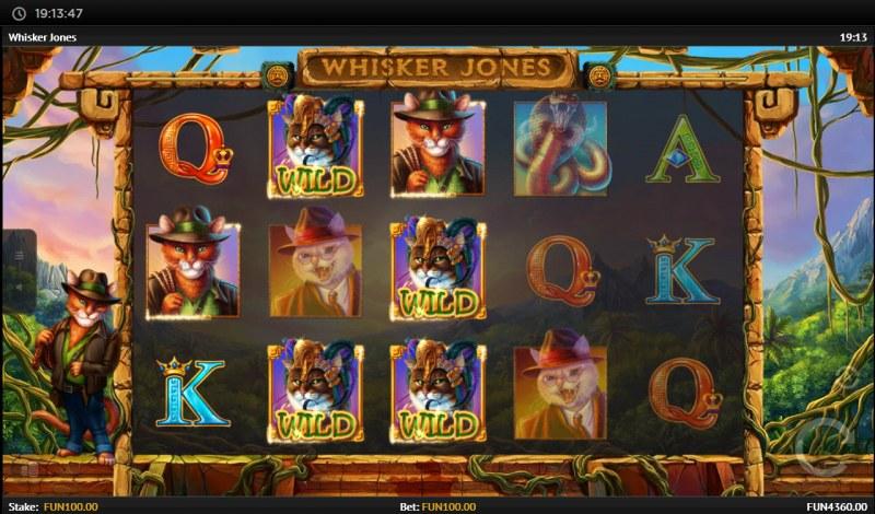 Whisker Jones :: Multiple winning combinations lead to a big win