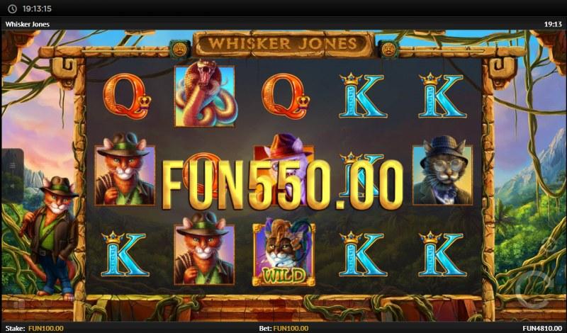 Whisker Jones :: Multiple winning paylines