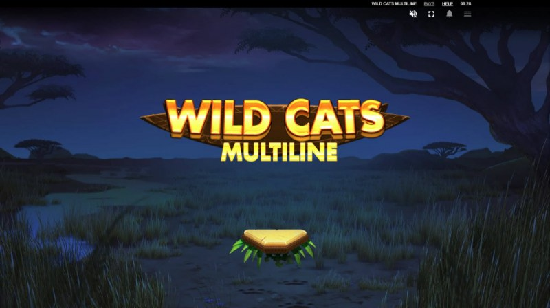 Wild Cats Multiline :: Introduction