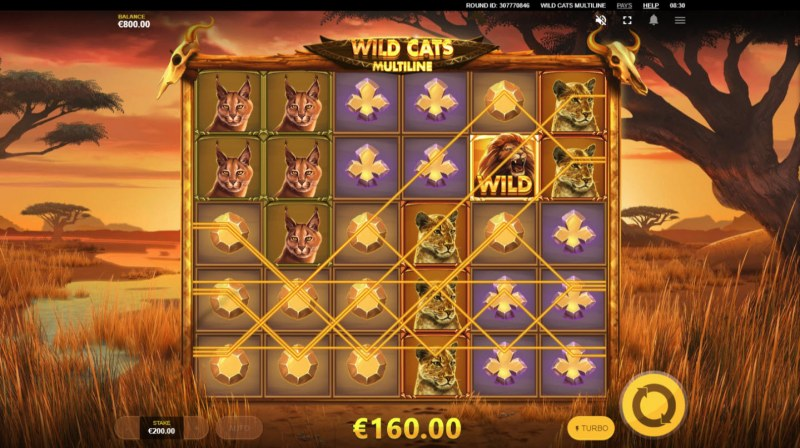 Wild Cats Multiline :: Multiple winning paylines