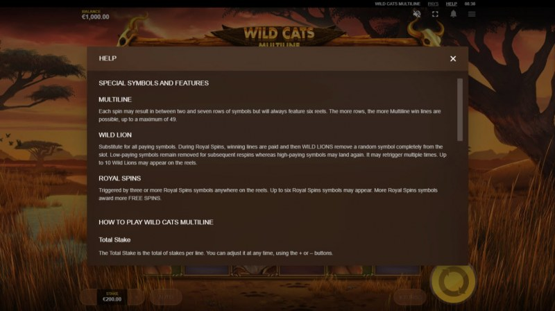Wild Cats Multiline :: General Game Rules