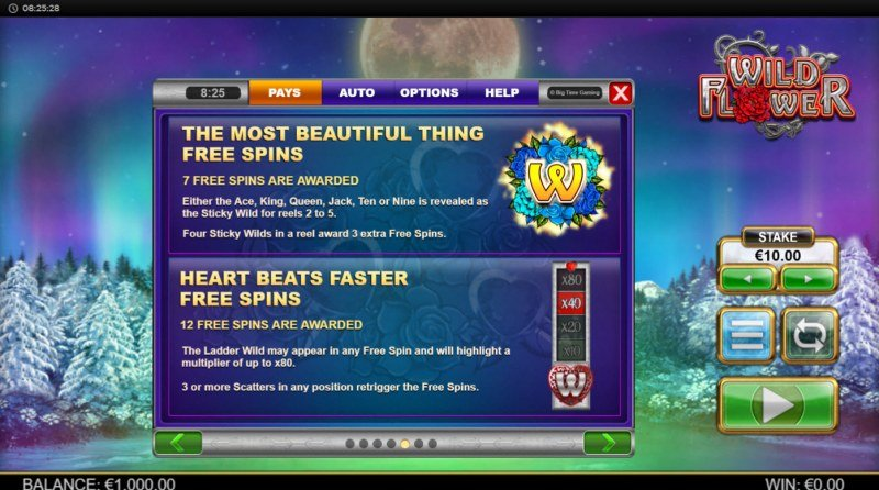 Wild Flower :: Free Spin Feature Rules