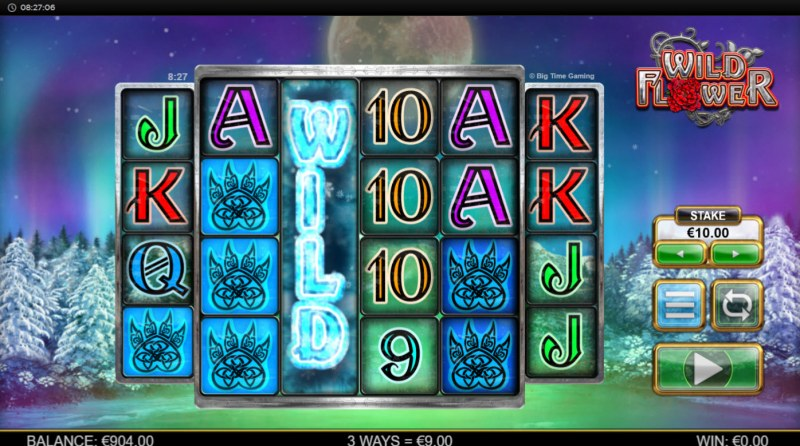 Wild Flower :: Multiple winning combinations