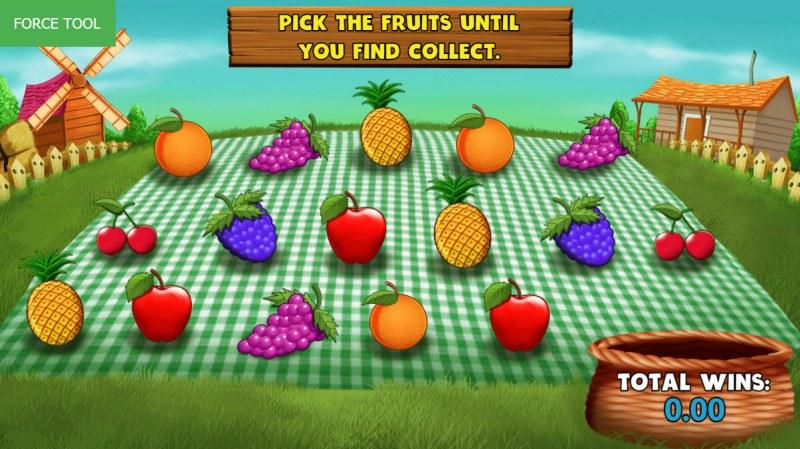 Wild Fruit :: Bonus Pick Game Board